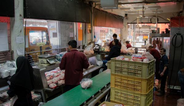 خروج مرغ از تهران ممنوع شد، بالاشهری ها گران می فروشند!