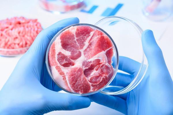 گوشت مصنوعی و آزمایشگاهی؛ آغاز یک صنعت عجیب و غریب!